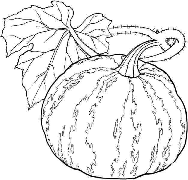 Sebzelerle Ilgili Boyama Sayfaları Sibel öztürk